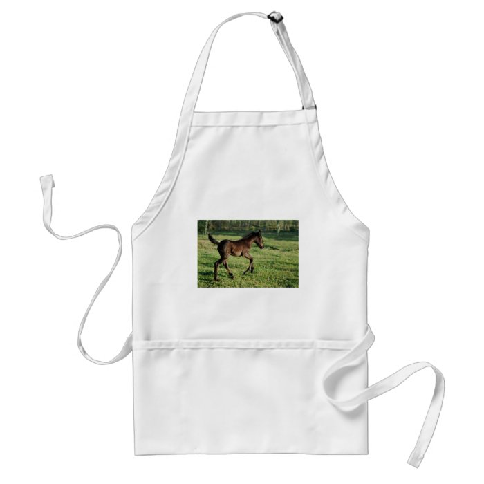 A two week old foals joy adult apron