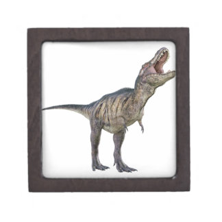 A Tyrannosaurus Rex Looking Up and Roaring Jewelry Box