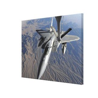 A US Air Force F-15 Eagle Canvas Print