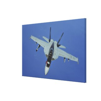 A US Navy F/A-18F Super Hornet in flight Canvas Print