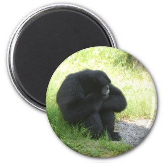 A veces incluso los monos tienen malos días imán de frigorifico