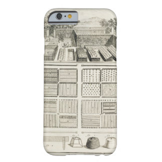 A vegetable garden, from 'The Encyclopedia of Scie Barely There iPhone 6 Case