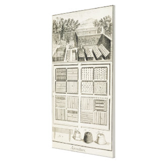 A vegetable garden, from 'The Encyclopedia of Scie Canvas Print