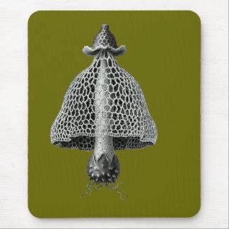 A veiled stinkhorn mouse pad