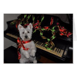 A Very Westie Christmas Greeting Card