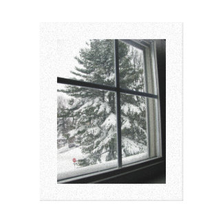 A View from a Window of a Snow Covered Evergreen Canvas Print