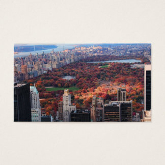 A view from above: Autumn in Central Park 01 Business Card