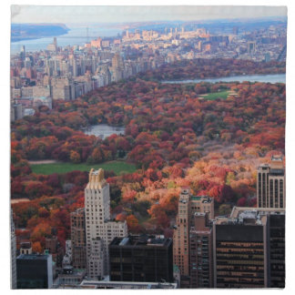 A view from above: Autumn in Central Park 01 Cloth Napkin
