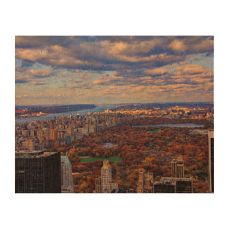 A view from above: Autumn in Central Park 01 Cork Paper Print
