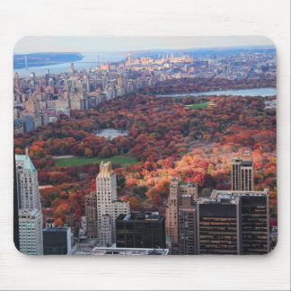 A view from above: Autumn in Central Park 01 Mouse Pad