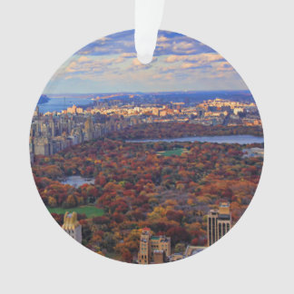 A view from above: Autumn in Central Park 01 Ornament