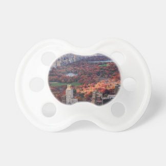 A view from above: Autumn in Central Park 01 Baby Pacifiers