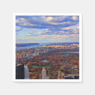 A view from above: Autumn in Central Park 01 Paper Napkin