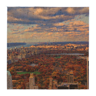 A view from above: Autumn in Central Park 01 Beverage Coaster