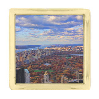 A view from above: Autumn in Central Park 01 Gold Finish Lapel Pin