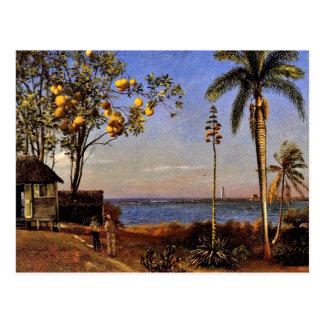 A View in the Bahamas, Albert Bierstadt painting Postcard