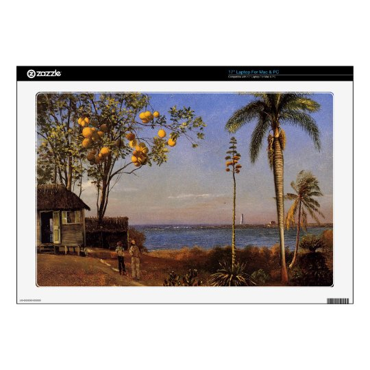 A View in the Bahamas by Bierstadt Albert. Decal For Laptop