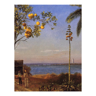 A View in the Bahamas by Bierstadt Albert Flyer