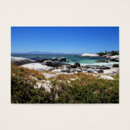 A view of Boulders beach and its famous penguins Business Card