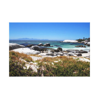 A view of Boulders beach and its famous penguins Canvas Print