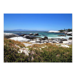 A view of Boulders beach and its famous penguins Card