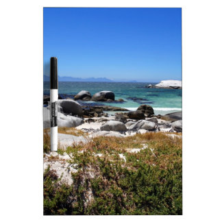 A view of Boulders beach and its famous penguins Dry-Erase Board