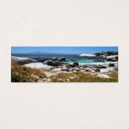 A view of Boulders beach and its famous penguins Mini Business Card