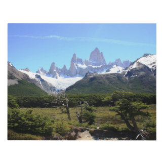 A View Of Mount Fitz Roy Panel Wall Art