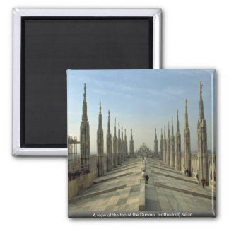 A view of the top of the Duomo, (cathedral) Milan Magnet