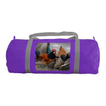 A Vorwerks Chicken pair, Rooster and Hen Eating Gym Bag