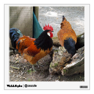 A Vorwerks Chicken pair, Rooster and Hen Eating Wall Skin