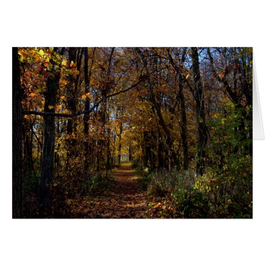 A Walk At Estel Wetlands #1 Card