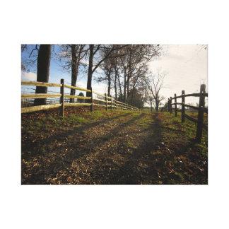 A Walk Down a Country Path Photograph Canvas Print