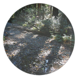 A Walk in Muir Woods Melamine Plate