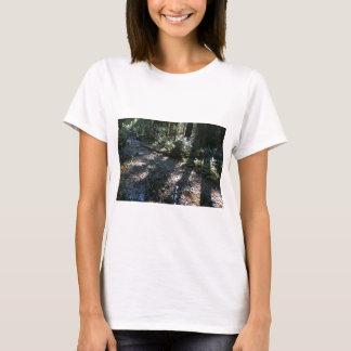 A Walk in Muir Woods T-Shirt