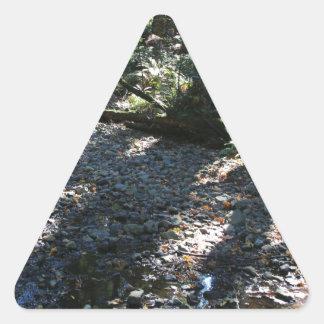 A Walk in Muir Woods Triangle Sticker