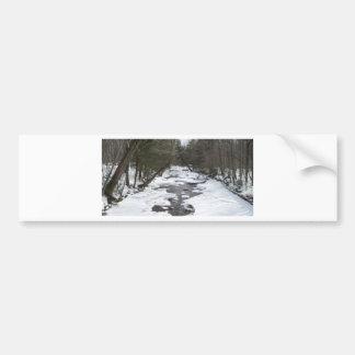 A Walk In The Woods Bumper Sticker