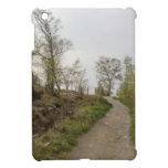 A walk in the woods iPad mini cover