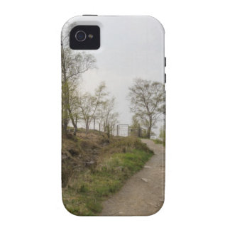 A walk in the woods iPhone 4/4S covers