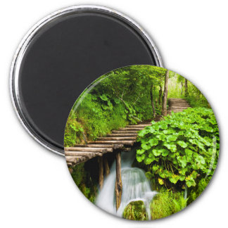 A Walk in the Woods Magnet