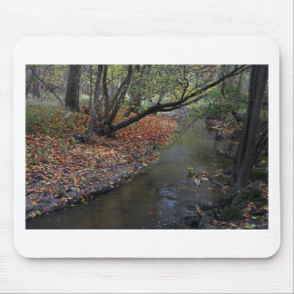 A Walk in Wildwood Mouse Pad