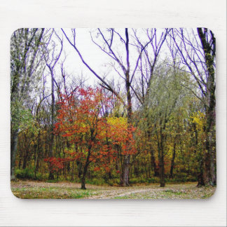 A Walk On A Trail Mouse Pad