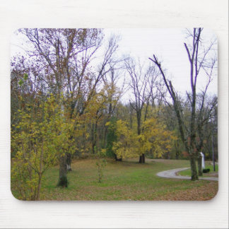 A Walk On An Autumn Day Mouse Pad