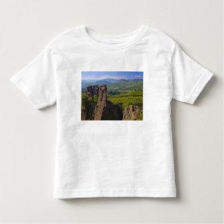 A walk throught Belogradchik Castle Ruins 2 Toddler T-shirt