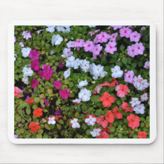 A Wall of Impatiens Mouse Pad
