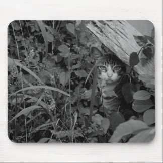 A Wanderer's Dwelling Mousepad