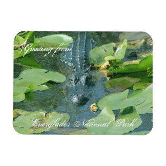 A warm greeting from Everglands Nat'l Park Rectangular Photo Magnet