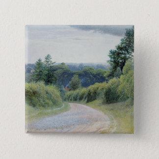 A Warwickshire Lane Pinback Button
