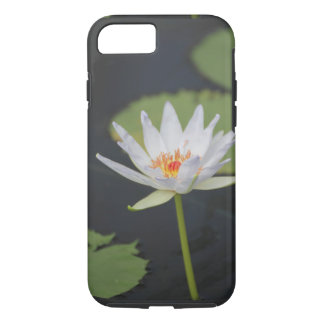 A water plant blooming iPhone 8/7 case