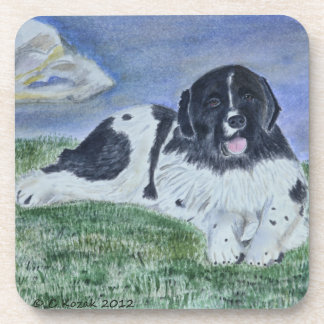 A watercolor Painting of a Landseer Newfoundland Coaster